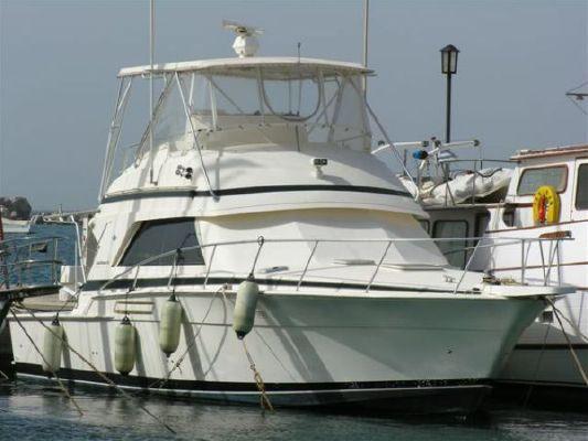 Boats for Sale & Yachts Bertram 43 Convertible 1990 Bertram boats for sale
