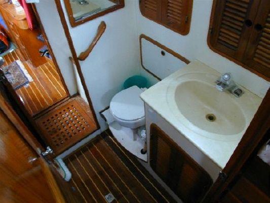 Tania Cardinal 1990 All Boats
