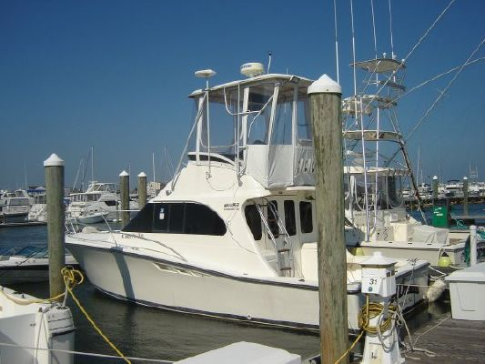 Luhrs 320 Tournament 1991 All Boats
