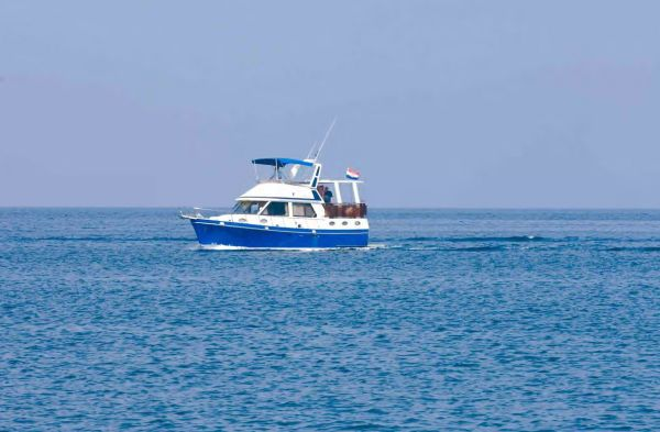Boats for Sale & Yachts Taiwan Star 1310 1991 All Boats