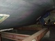 Boats for Sale & Yachts Trojan 11METER 1991 All Boats