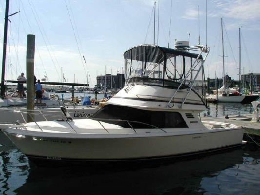 Boats for Sale & Yachts Blackfin 29 Flybridge 1992 Flybridge Boats for Sale