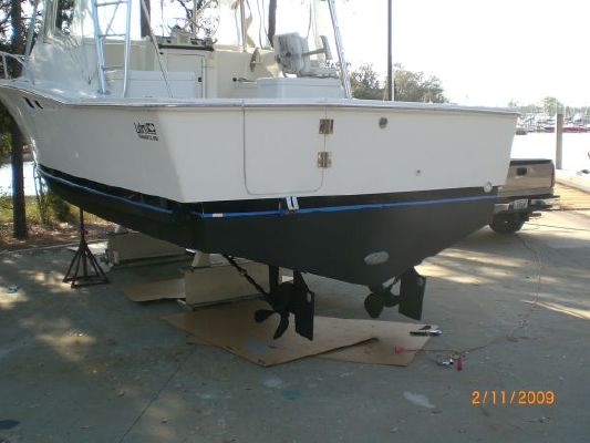 Luhrs Open 1995 All Boats