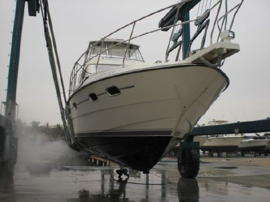 Neptunus Sedan Motor Yacht 1995 All Boats