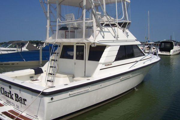 Phoenix SFX Convertible 1995 Phoenix Bass Boats for Sale