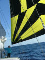 Boats for Sale & Yachts Ross Mitchel LONG RANGE 60? SAILING YACHT 1995 All Boats