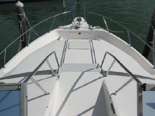 Sea Ray 44 Express Bridge 1995 Sea Ray Boats for Sale