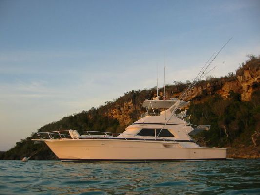 Boats for Sale & Yachts Bertram Convertible/ 3 Stateroom layout 1996 Bertram boats for sale