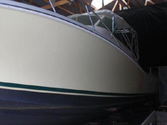 Cabo Yachts 1996 31 Express 1996 All Boats