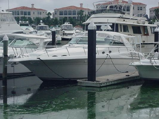 Boats for Sale & Yachts Sea Ray 450 DA 3216 CATS 1996 Sea Ray Boats for Sale