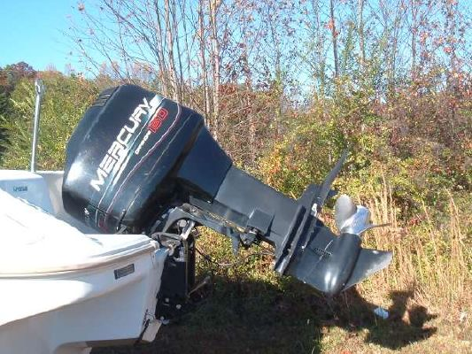 1996 wellcraft excel dx ski and fish offshore mercury 150 for Do all fish have mercury