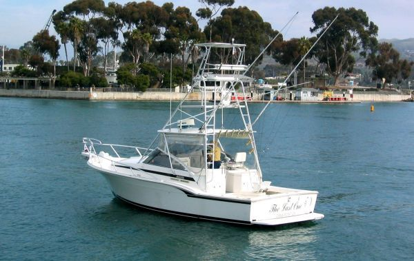 Blackfin Combi 1997 All Boats