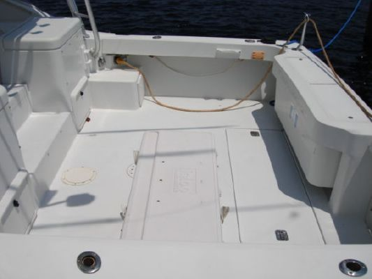 Luhrs 32 Open 1997 All Boats