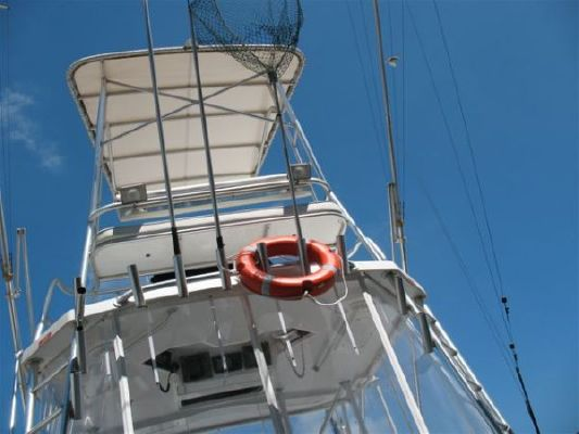 Luhrs Open 1997 All Boats