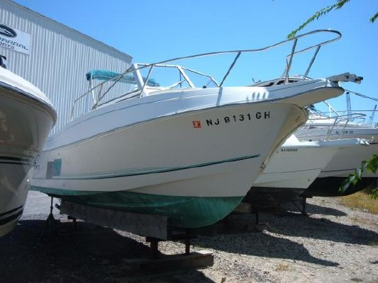 1998 aquasport 245 explorer  10 1998 Aquasport 245 Explorer