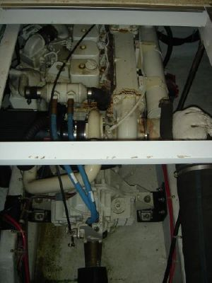 Bayliner 3988 Command Bridge 1998 Bayliner Boats for Sale