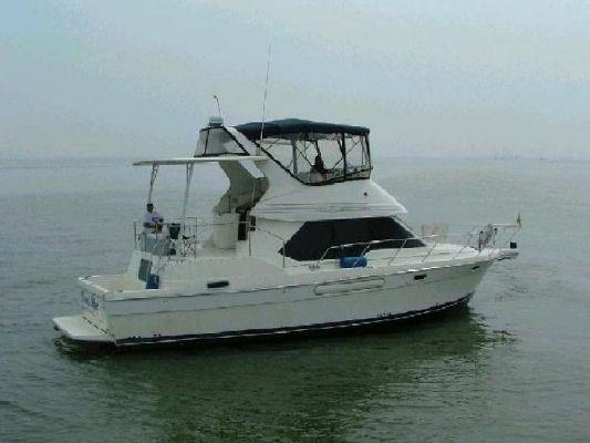 Bayliner 4087 CMY 1998 Bayliner Boats for Sale