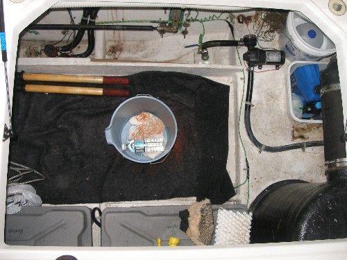 Bayliner 3788 Motoryacht 1999 Bayliner Boats for Sale