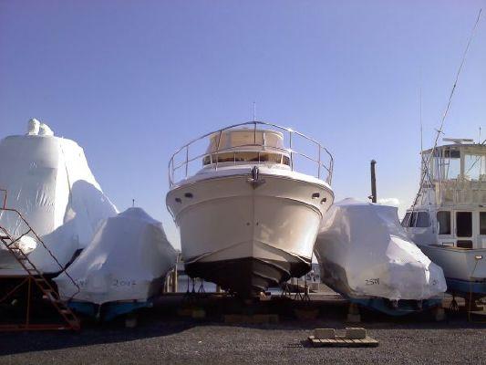 Sea Ray SEDAN BRIDGE 1999 Sea Ray Boats for Sale