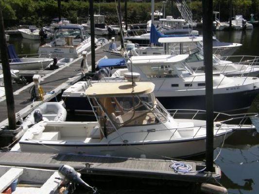 Shamrock 220 Walkaround 1999 Motor Boats