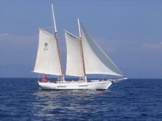 Shpountz 38/40 Classic Gaff 1999 All Boats