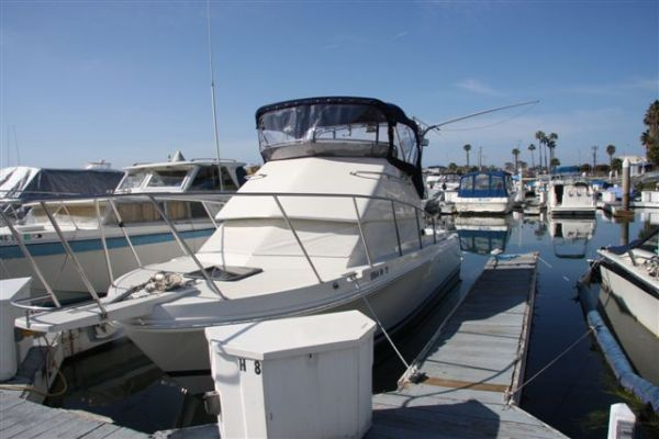 Boats for Sale & Yachts Skipjack 262 Fly Bridge 1999 All Boats
