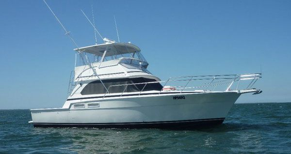 2000 caribbean 45 flybridge cruiser  1 2000 Caribbean 45 Flybridge Cruiser