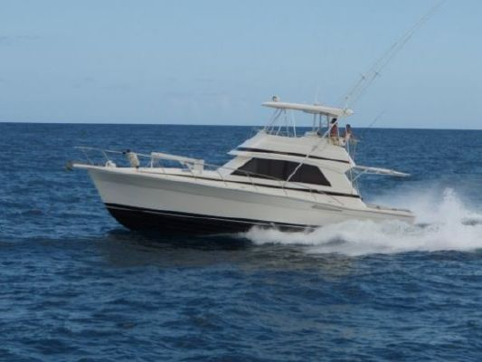 2000 Riviera 43 Convertible Boats Yachts For Sale