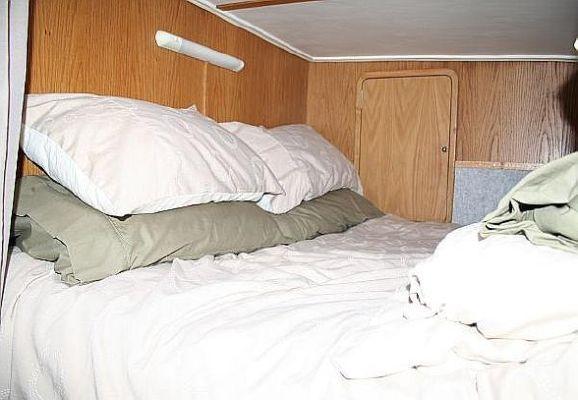 2000 wildcat 35 catamaran  15 2000 Wildcat 35 Catamaran