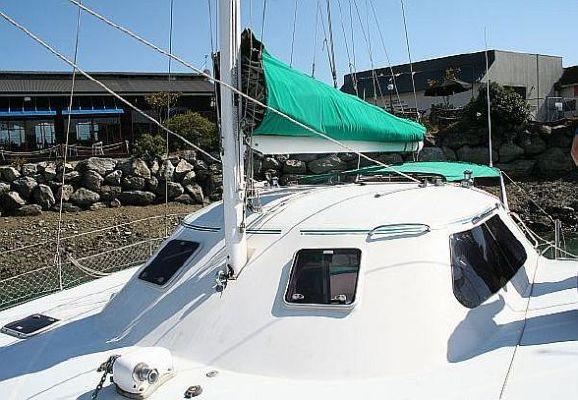 2000 wildcat 35 catamaran  3 2000 Wildcat 35 Catamaran