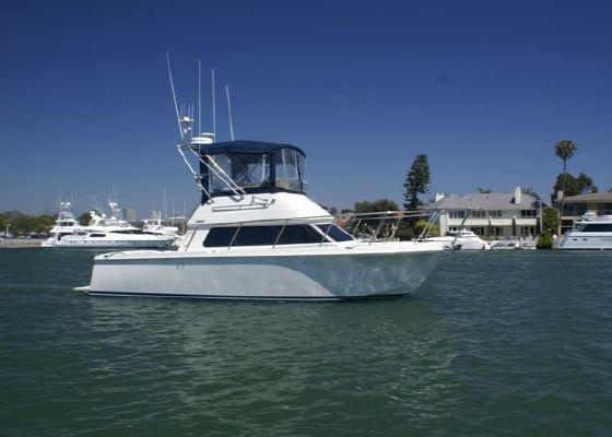 Boats for Sale & Yachts Skipjack 300 2001 All Boats