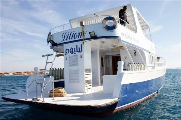 Boats for Sale & Yachts Costum Built Private Yacht / diving Yacht Safari Yacht 2002 All Boats