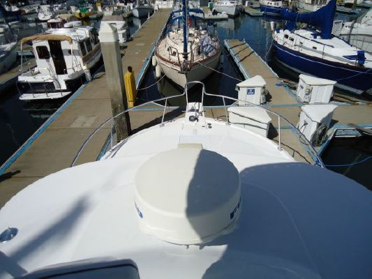 Luhrs 320 Open 2003 All Boats