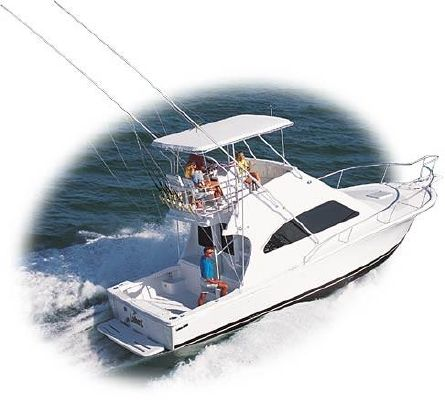 Luhrs 34 Convertible 2003 All Boats Convertible Boats