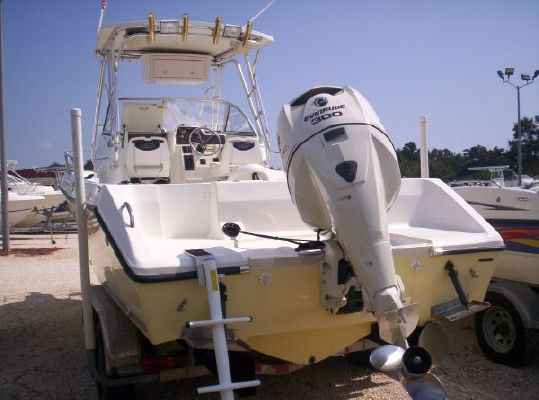 Pro Sports 2550 WA w/'08 300hp Evenrude E 2003 All Boats