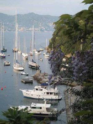 Boats for Sale & Yachts Selene 43 Ocean Trawler 2003 Trawler Boats for Sale