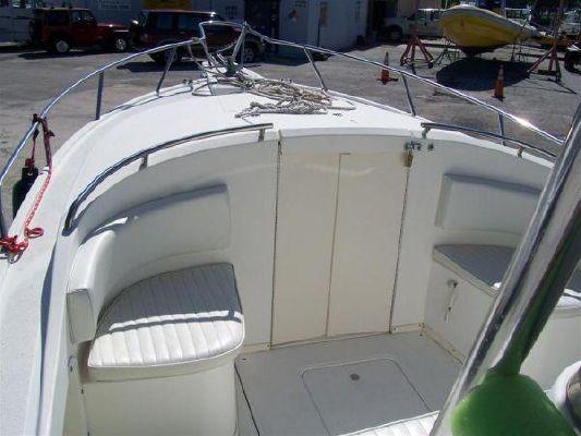 Boats for Sale & Yachts Shamrock 220 Stalker Center Console/Cuddy (in fresh water) 2003 Motor Boats
