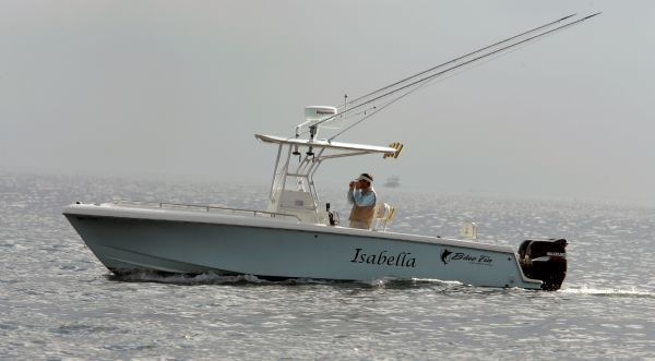 Blue Fin Yachts 250 Pro Fish 2005 All Boats