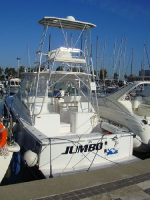 Luhrs 31 Open 2006 All Boats