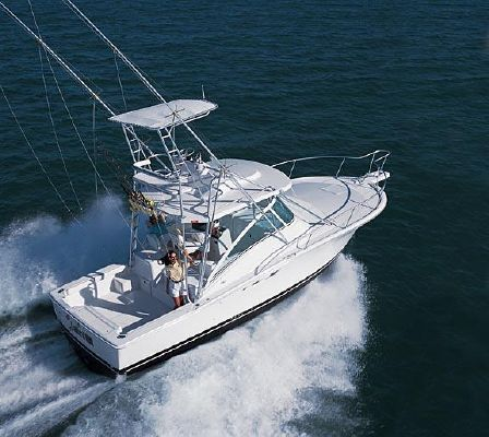 Luhrs 32 Open 2007 All Boats