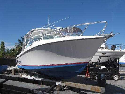 Contender 38 Express 2008 Contender Powerboats for Sale