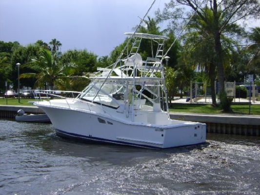 Luhrs Open 2008 All Boats