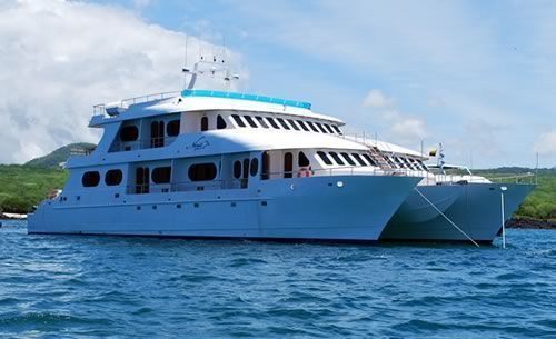 2009 Custom Catamaran Cruise Ship Boats Yachts For Sale