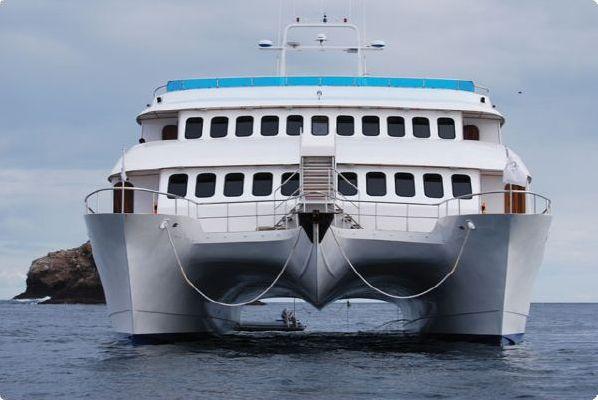 2009 Custom Catamaran Cruise Ship Boats Yachts For Sale