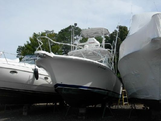 Luhrs 28 Open 2009 All Boats