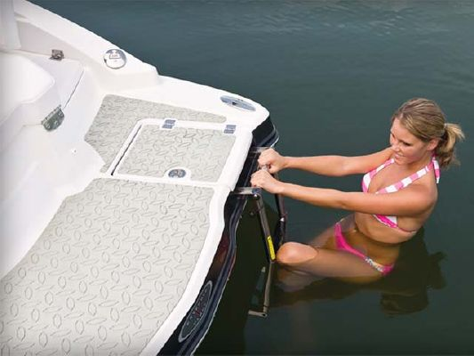 Chaparral XTREME TOW BOAT 204 XTREME 2011 Chaparral Boats for Sale