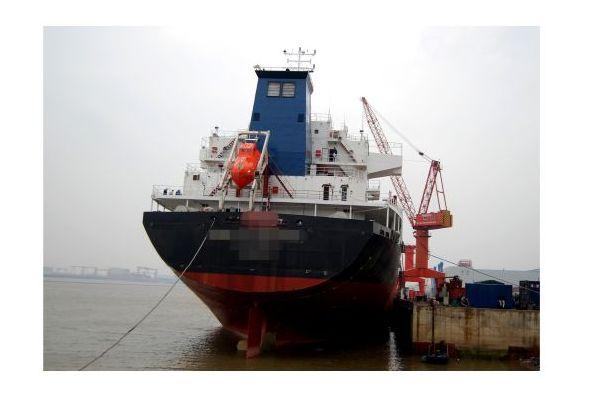 Commercial Cargo Bulker 2011 Commercial Boats for Sale