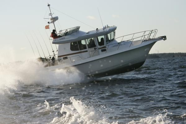 Nord Star 31 2011 All Boats