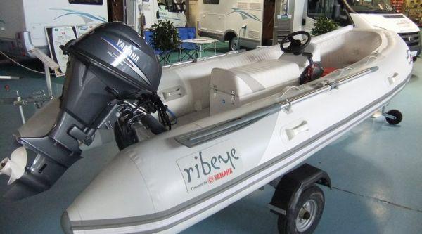 Ribeye TS 370 2011 All Boats