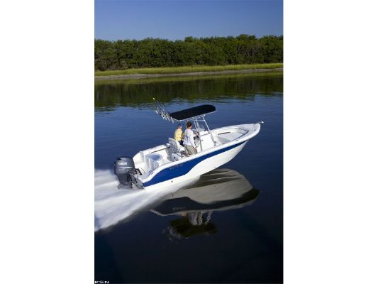 Sea Fox 216CC 2011 All Boats